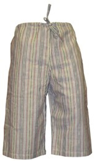 Picture of ikat shorts