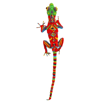 Picture of lively lizard