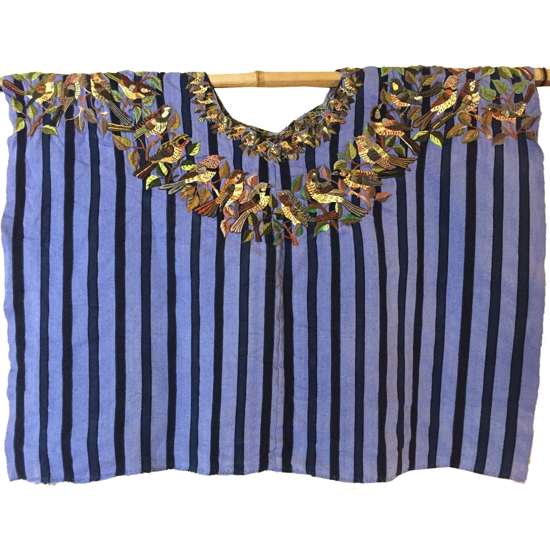 Picture of bird huipil blouse