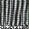 Picture of san antonio stripe scarf